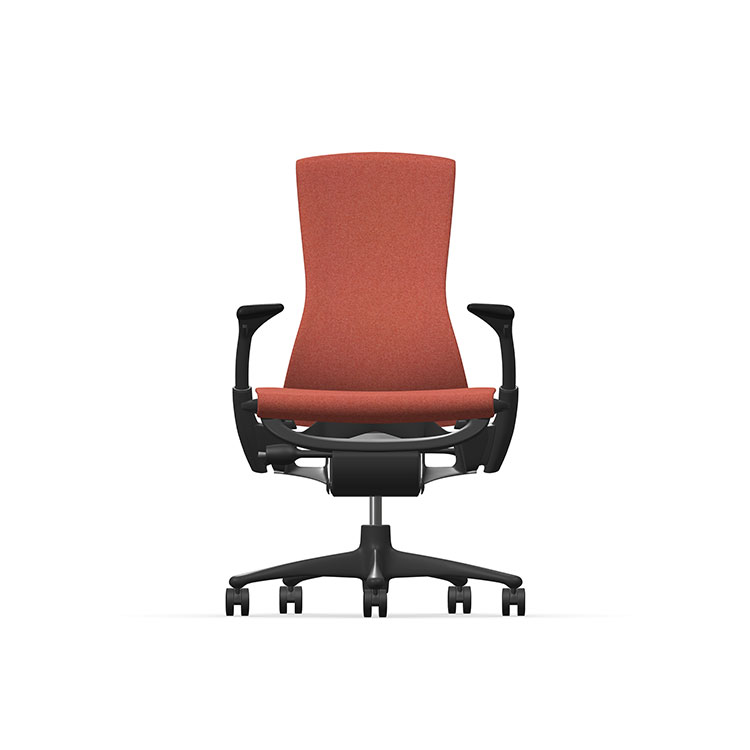 Herman Miller Embody - Business - Graphite - Sync Canyon